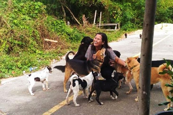 Stray Dog Brings Cutest Surprises To Woman Who Feeds Him Everyday
