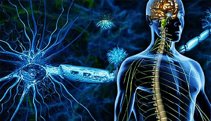 The Early Signs of Multiple Sclerosis