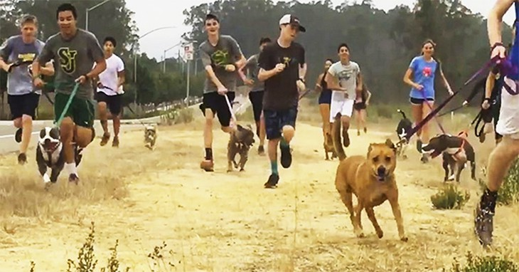 High School Track Team Runs With Homeless Dogs