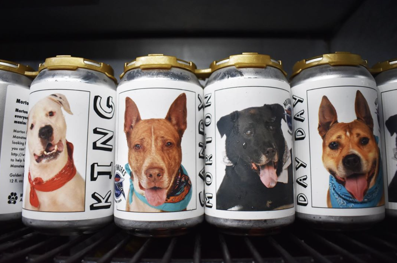 Florida Brewery Has The Best Idea Of Advertising Shelter Dogs For Adoption On Their Beer Cans