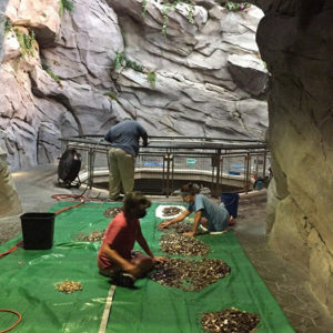 14 Years Of Wishes With Coins Collected From Their Wishing Well Will Help Pay The Bills For The North Carolina Aquarium