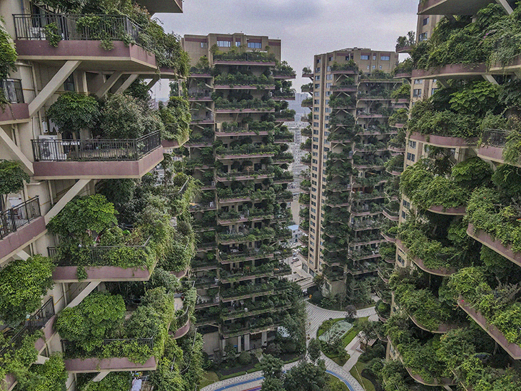 """An Effort To Turn Apartment Buildings Into A """"Vertical Forest"""" In China Goes Terribly Wrong With Jungle-Like Mosquito Infestation"""
