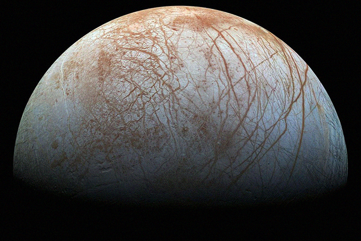 Are Aliens Real? A Space Scientist Seems To Think Jupiter's Moon Has Octopus-Like Creatures On It