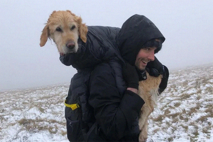A Brave Rescue By Hikers As They Traverse Through Icy Trails To Rescue A Stranded Dog