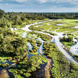 Charitable Couple Gives $100 Million To Protect And Preserve 57,000 Of The African Protected Areas